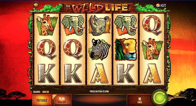 Wild Life Slot